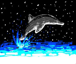 Dolphin crossing the Ocean