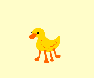 Four Footed Duck