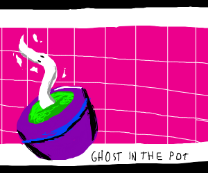 ghost plant in a purple pot