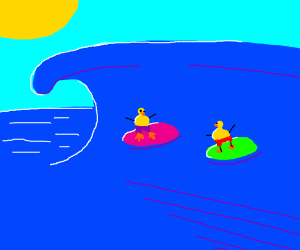 ducks surfing