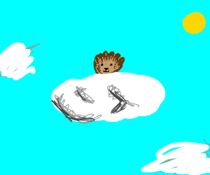 hedgehog on a cloud