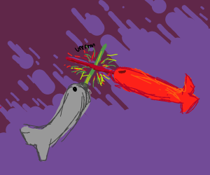 Epic Lazor Narwhal fight