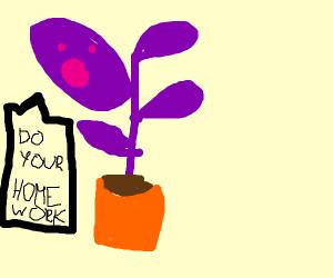 purple plant tells u 2 do da goddamn homework