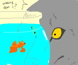 Wolf asks a goldfish in a bowl where he is