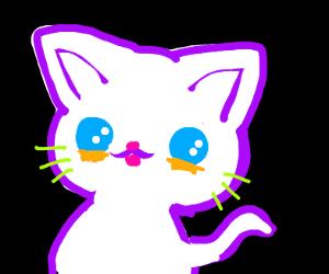 kawwai cat uwu