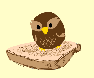 Owl on Toast