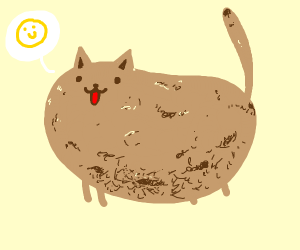 a potato cat is happy for no reason
