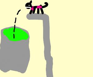 Cat in bikini jumps in toxic waste