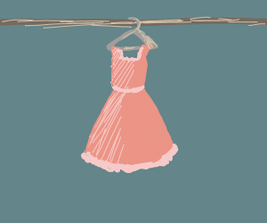 Pink dress hangs in closet.