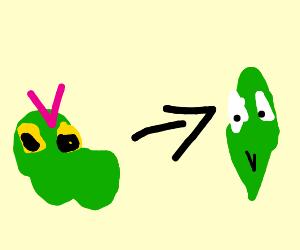 Caterpie Evolves