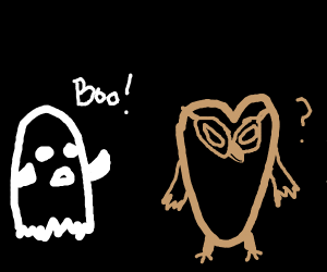a ghost tries to scare an owl