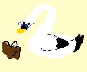 Nerdy Swan