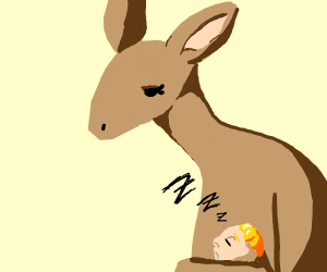 Kid sleeps in kangaroo's pouch