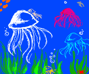 jellyfish under the sea