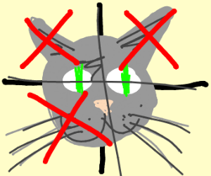 half half cat