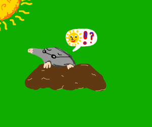 Mole finally sees daylight