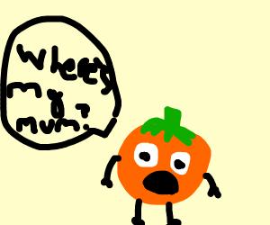 Lost Orange
