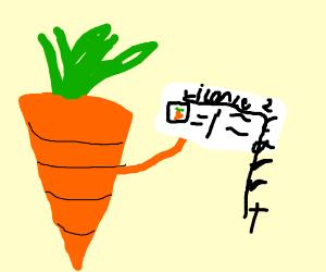 Carrot license