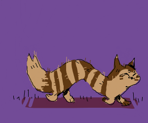 Furret Pokemon Walks Around