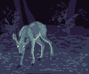 Deer in the dark