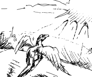 hippogriff likes looking at the sun