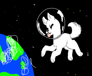 A dog floating in space (Not the communist on