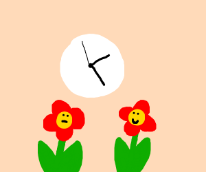 Flowers look at a clock