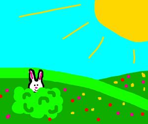 A cute white rabbit in a field