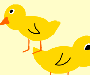 Free Ducks!