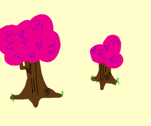 trees with pink leaves