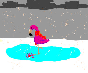 Flamingo standing on ice