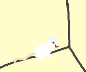 Happy mouse in a corner