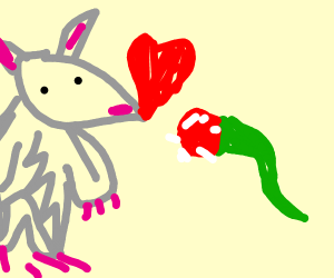 A rat in love with a leek