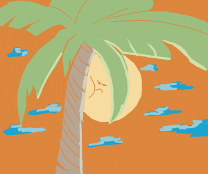 Palm tree hides part of the sun