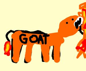 Dragon goat