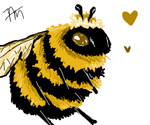 loving bumblebee (not the car)