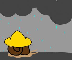 A lil' snail