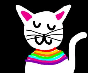 cat uwu with rainbow scarf