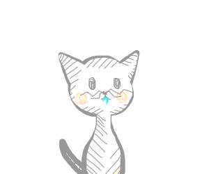 cat drooling