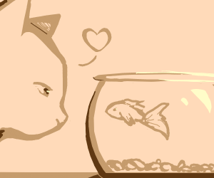 cat in love with fish