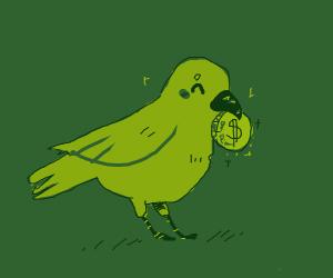 Bird picks up a coin