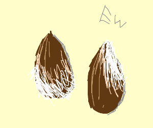 Fuzzy almonds