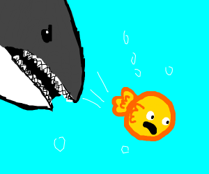 Shark vs. Goldfish