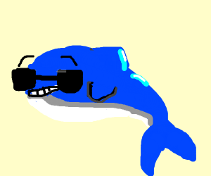 Ultra swag dolphin