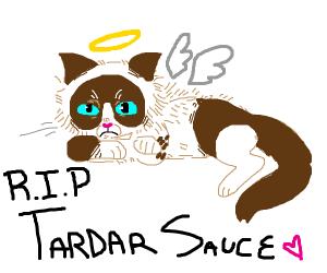 Rest in peace Grumpy Cat :'(