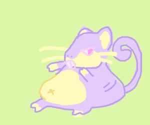 Fat Rattata