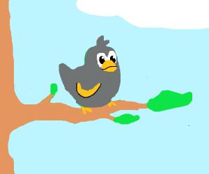 A small orange and grey bird