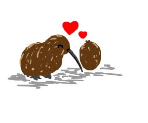 kiwis in love