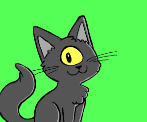 Cyclops cat