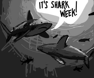 Shark Week Emerges